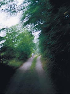 LITEN OCH STOR: Ett ensamt barn på en väg, omgiven av stora träd. Träden lutar sej in över barnet, och man kan se dom som ett skydd... eller som ett hot. Foto: Per Johansson